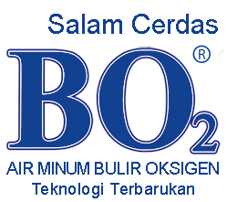 logo2a1